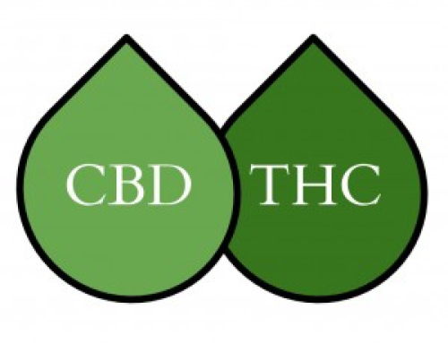 5 CBD interesting and important facts