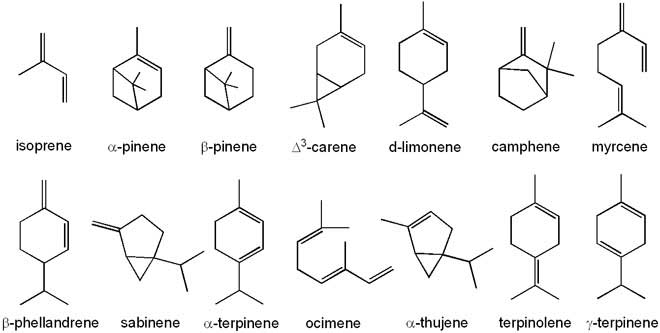 What is the structural formula of isoprene